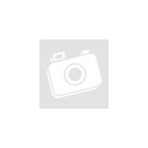 DAM FIGHTER PRO TELE POLE 4m