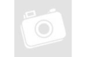 A Toyger macskafajta jellemzői